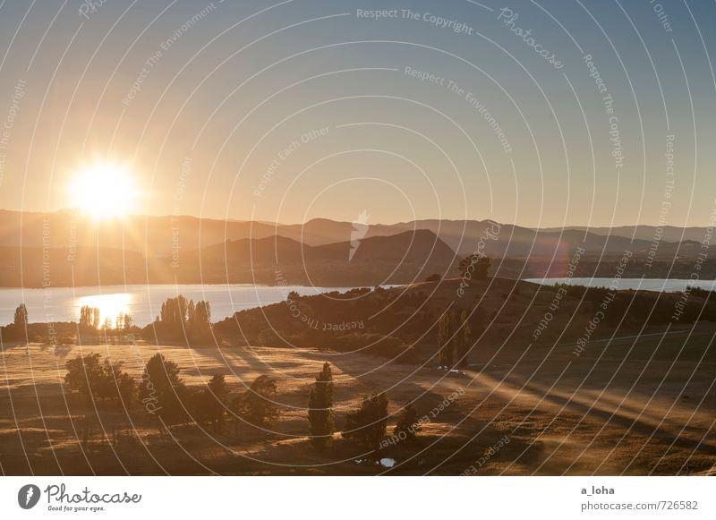 Morning Light Natur Ferien & Urlaub & Reisen Pflanze Sommer Sonne Baum Einsamkeit Landschaft Umwelt Berge u. Gebirge Wärme Küste Gras Horizont Luft