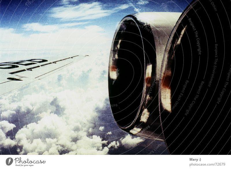 Fensterplatz Himmel Ferien & Urlaub & Reisen Wolken Freiheit Flugzeug Tragfläche Fensterblick