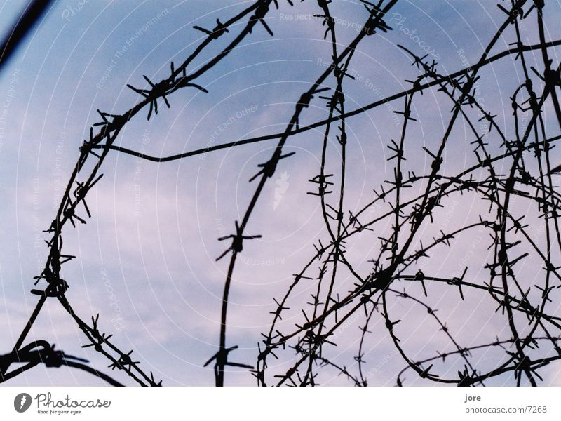 Eingesperrt Himmel Angst Technik & Technologie Zaun Justizvollzugsanstalt Stacheldraht Elektrisches Gerät einsperren