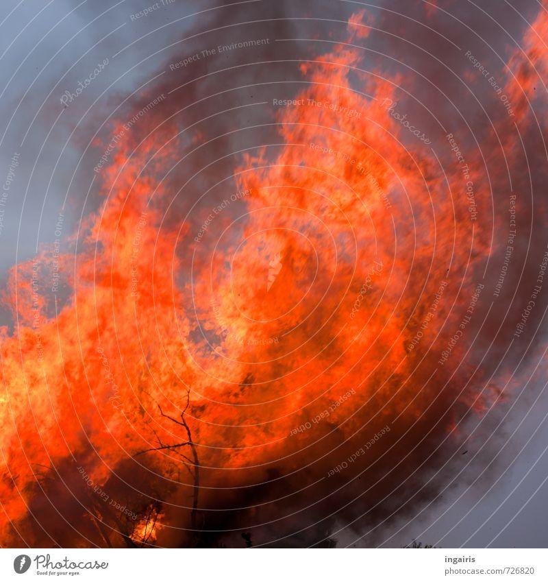Es brennt! Feste & Feiern Osterfeuer Feuer Himmel Holz Zeichen Rauch Rauchen bedrohlich groß heiß hell blau orange Risiko Stimmung Umwelt Vergänglichkeit Flamme