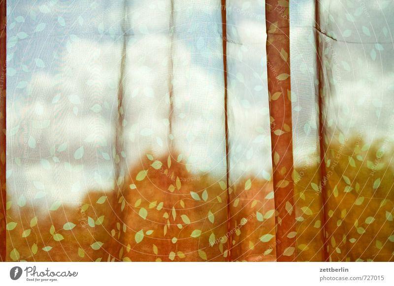 Neue Gardine Lifestyle Stil Häusliches Leben Wohnung Raum Umwelt Natur Landschaft Himmel Wolken Klima Klimawandel Wetter Schönes Wetter Baum Garten Park Fenster