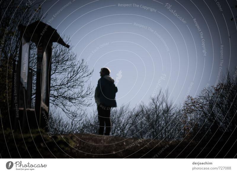 Info Tafel für Wanderer. Ein Wanderer steht vor dem Hinweisschild und studiert den Plan.Blauer Himmel und Sträucher um ihn herum. Freude Fitness Wohlgefühl