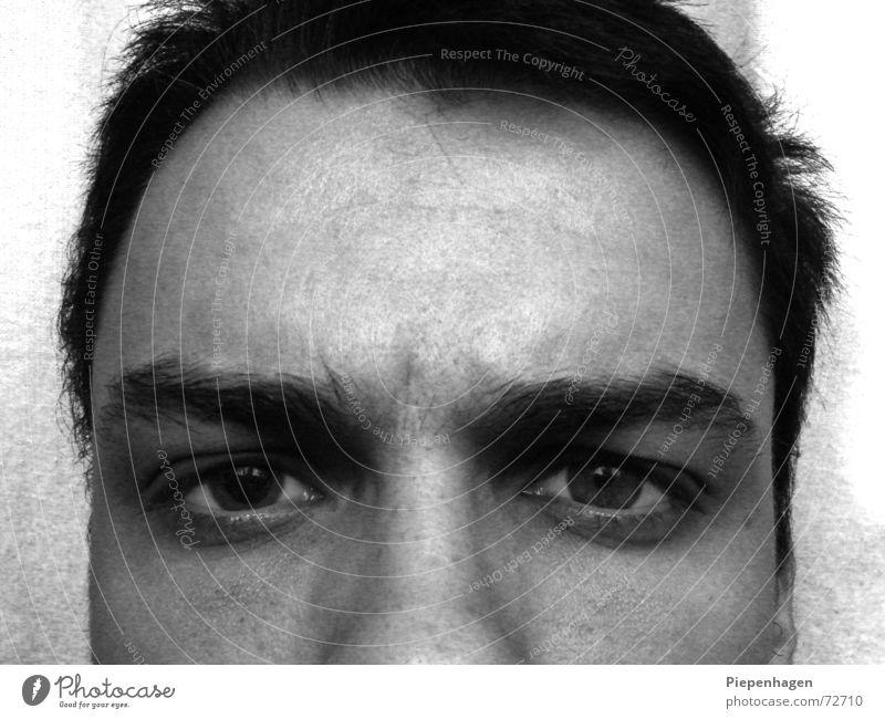 Ein Augenblick später Pupille Augenbraue Wimpern Stirn kalt Physik Freundlichkeit böse dunkel Gefühle Teilung verlauster hund Haare & Frisuren Charakter Gesicht