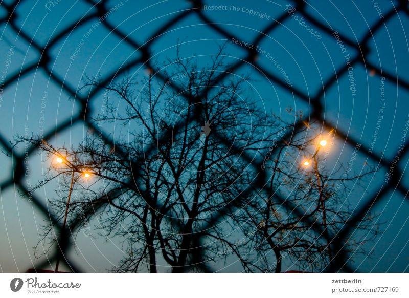 Abend Himmel blau Baum Umwelt Frühling Beleuchtung Angst Wetter Ordnung Wachstum bedrohlich Macht Ast Schutz Sicherheit Straßenbeleuchtung
