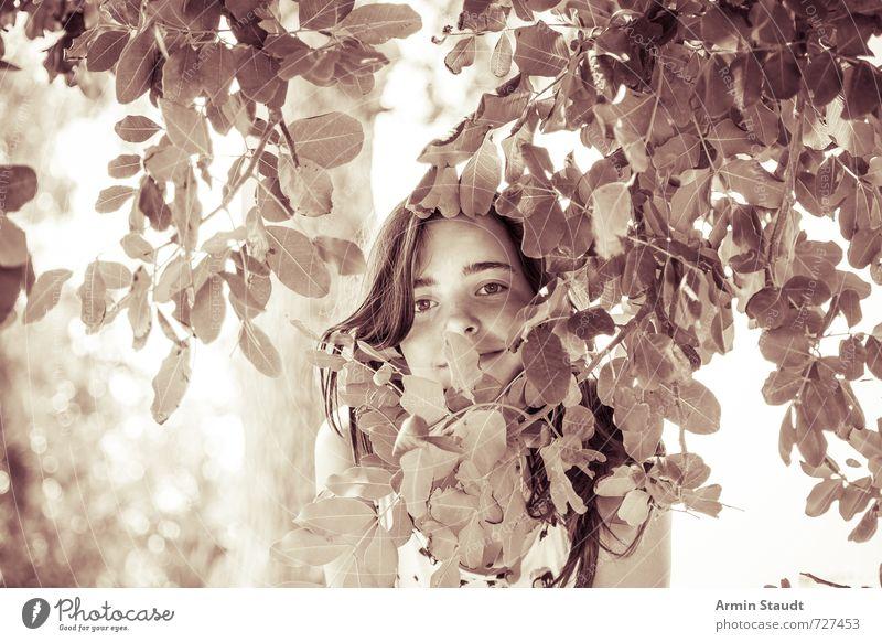 Lächelndes Mädchen hinter Laub Mensch Kind Natur Jugendliche alt schön Sommer Baum Blatt Gefühle feminin Glück stehen 13-18 Jahre ästhetisch Fröhlichkeit