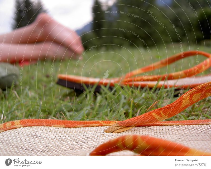 Flip-Flops Schuhe Wiese grün gelb Bast Sandale Flipflops Bundesland Tirol Freizeit & Hobby fußbekleidung Fuß orange Nahaufnahme Makroaufnahme meadow grass feet