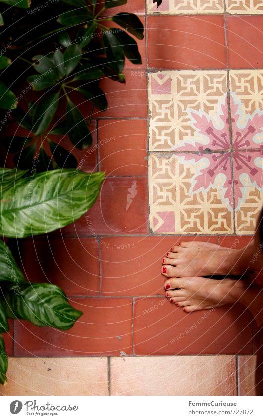 Havana. (IV) feminin Mädchen Junge Frau Jugendliche Erwachsene Fuß 1 Mensch 13-18 Jahre Kind 18-30 Jahre ästhetisch Sonnenbad Nagellack lackiert Zehennagel rot
