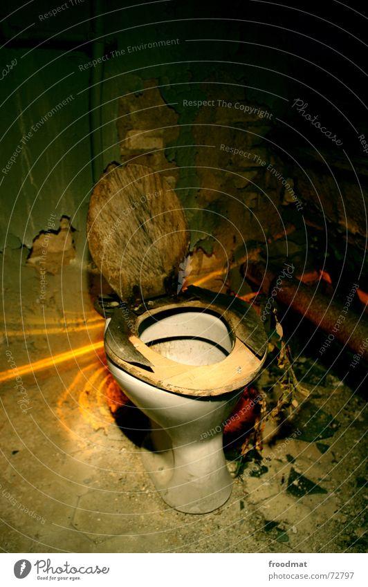 Toilette staubig dreckig Staub Putz Brille Holz Langzeitbelichtung Bedürfnisse Dorf Pissoir Müll Licht Abfluss hässlich gruselig Raumpfleger Pflanze Einsamkeit