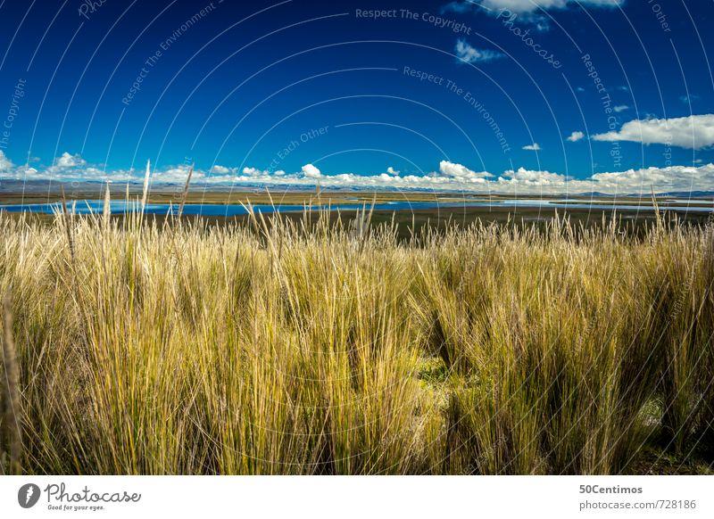 Hoch in den Anden von Peru Natur Ferien & Urlaub & Reisen Sommer Sonne Landschaft ruhig Wolken Ferne Umwelt Wiese Freiheit außergewöhnlich See Erde Feld