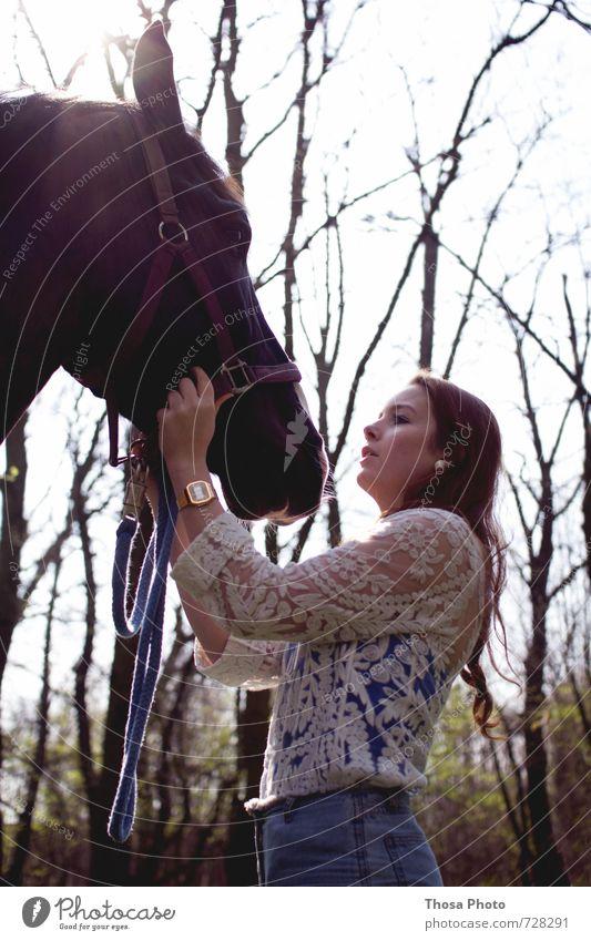Zusammen ist man weniger allein II Tier Pferd Tiergesicht Fell 1 alt hoch schön wild weich Wut Gelassenheit geduldig ruhig Selbstbeherrschung Junge Frau braun