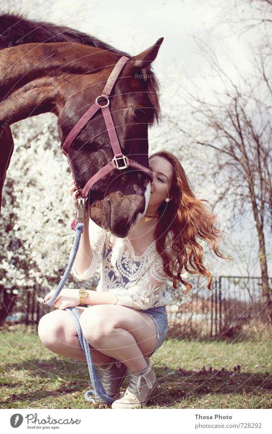 Zusammen ist man weniger allein III Sonne Gras Rock Hose Jeanshose Pferd 1 Tier Blühend Blick Umarmen warten feminin wild weiß dankbar Chucks Halfter Fuchs