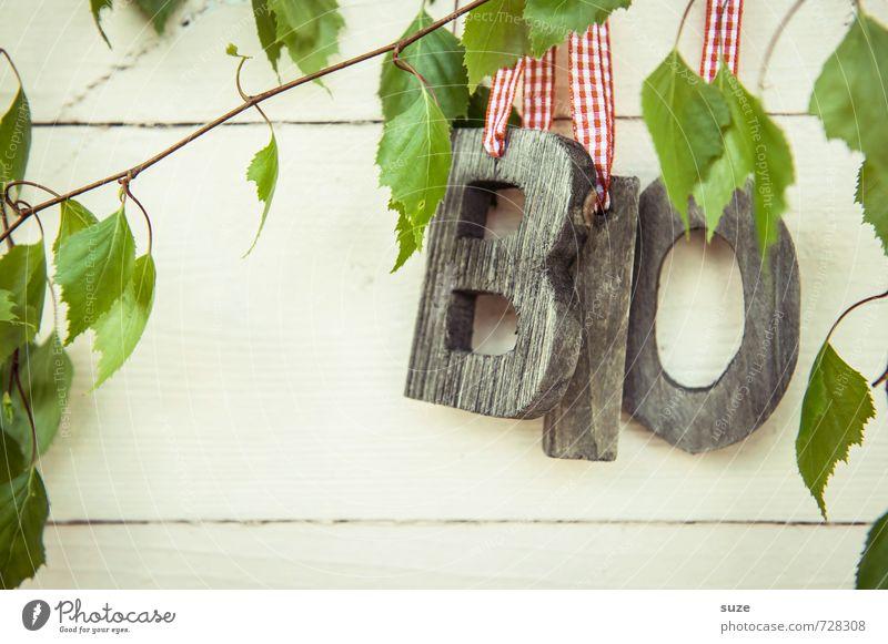 BiO Logisch Natur grün weiß Blatt Umwelt Gesunde Ernährung Frühling Holz natürlich Gesundheit Lebensmittel Freizeit & Hobby Lifestyle Dekoration & Verzierung