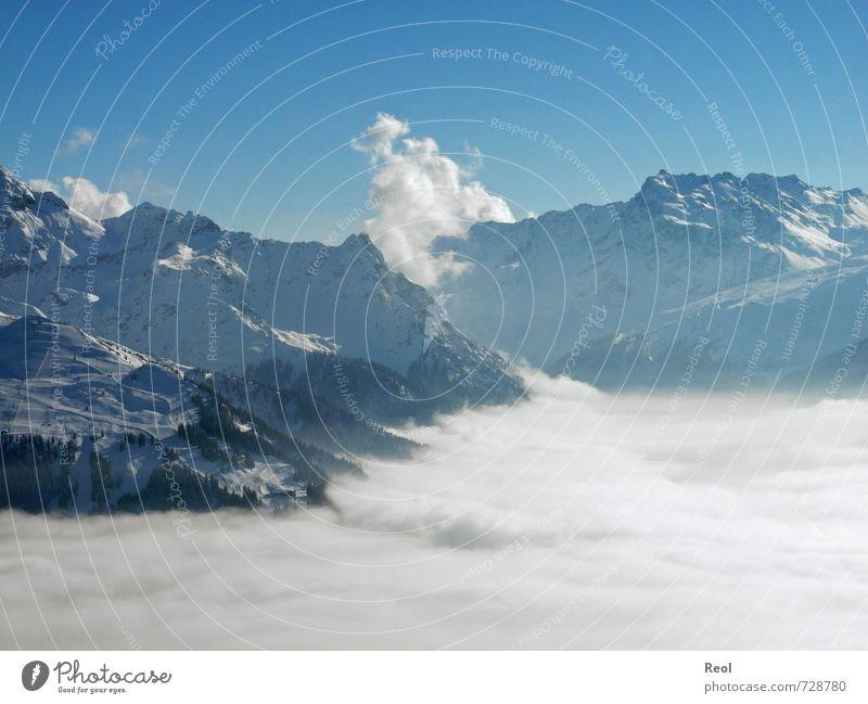 Ein Meer aus Nebel Wintersport Umwelt Natur Landschaft Wolkenloser Himmel Horizont Schönes Wetter Berge u. Gebirge Alpen Skigebiet Gipfel Schneebedeckte Gipfel