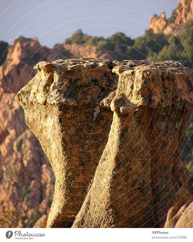 Felsenzähne Natur Stein Landschaft Korsika