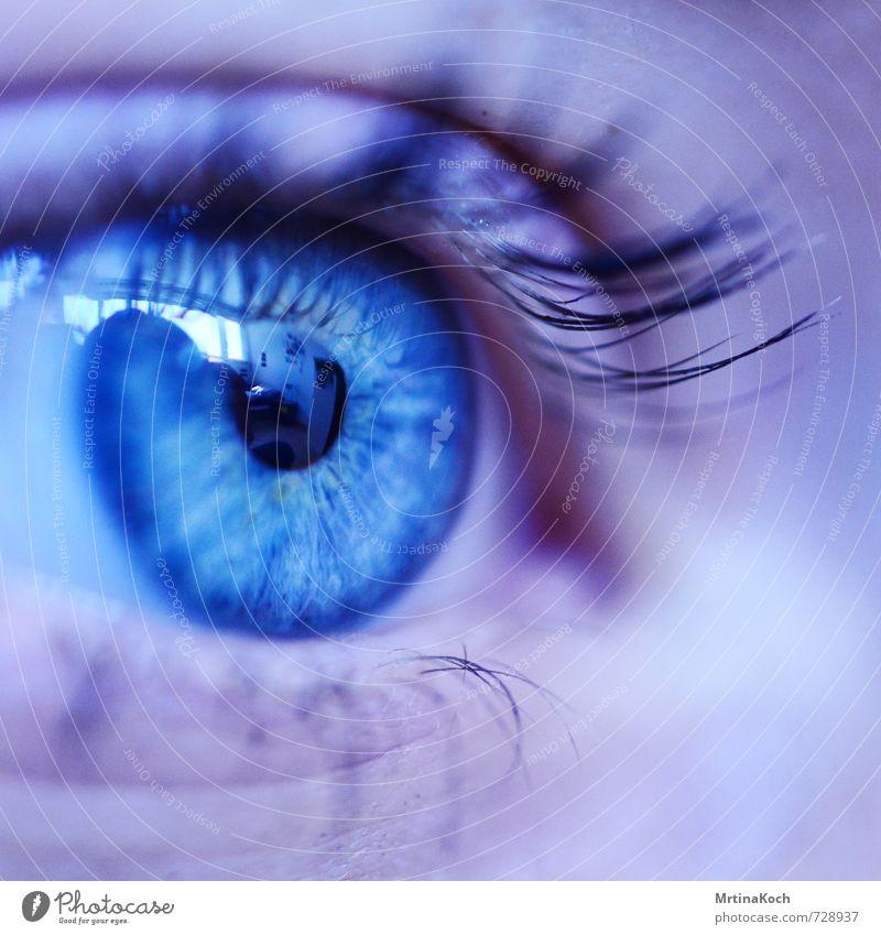 my eyes to see. Mensch feminin Erwachsene Auge 1 18-30 Jahre Jugendliche authentisch Ferne hell natürlich schön Erotik blau Pupille Wimpern Wimperntusche