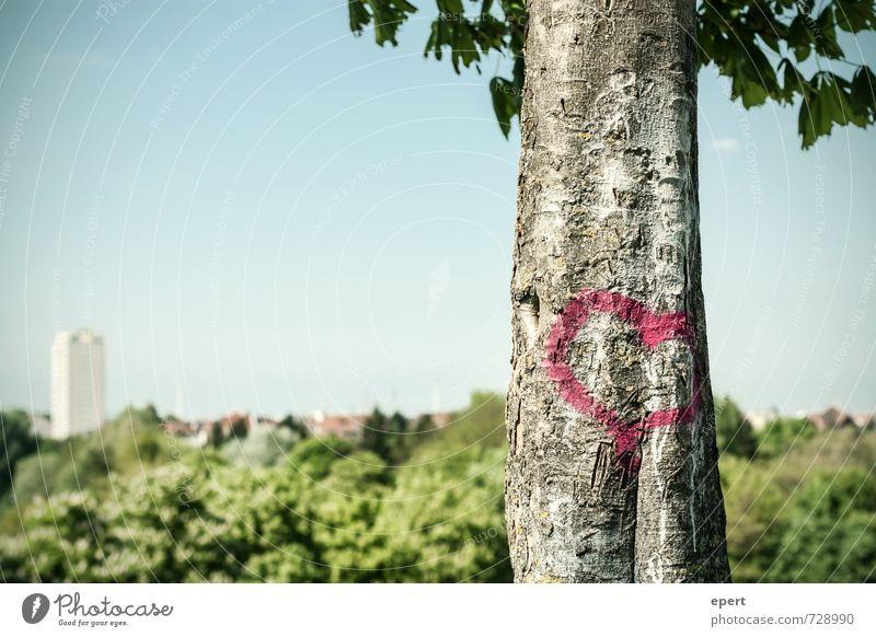 Vor Stadt Liebe Jugendkultur Graffiti Himmel Frühling Pflanze Baum Baumstamm Garten Park Wald Zeichen Herz einzigartig Glück Lebensfreude Frühlingsgefühle