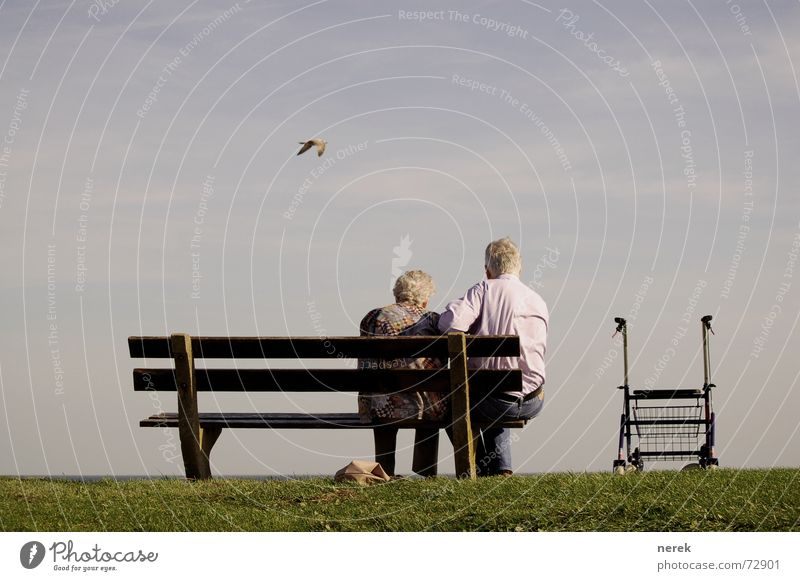 Oma braucht Pflege / Hilfe kommt von oben Farbfoto Außenaufnahme Textfreiraum oben Tag Sonnenlicht Zentralperspektive Rückansicht Gesundheitswesen Krankheit