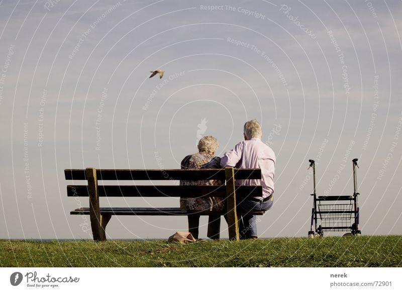 Oma braucht Pflege / Hilfe kommt von oben Mensch Frau Mann Sommer Tier ruhig Erwachsene Erholung Leben Senior Arbeit & Erwerbstätigkeit Vogel Zusammensein Zufriedenheit Hilfsbereitschaft Gesundheitswesen