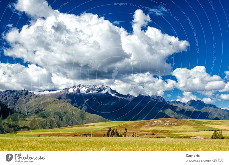 Die Anden in Peru Umwelt Natur Landschaft Erde Luft Himmel Wolken Sonne Sonnenlicht Sommer Wetter Schönes Wetter Gras Sträucher Moos Feld Hügel Felsen
