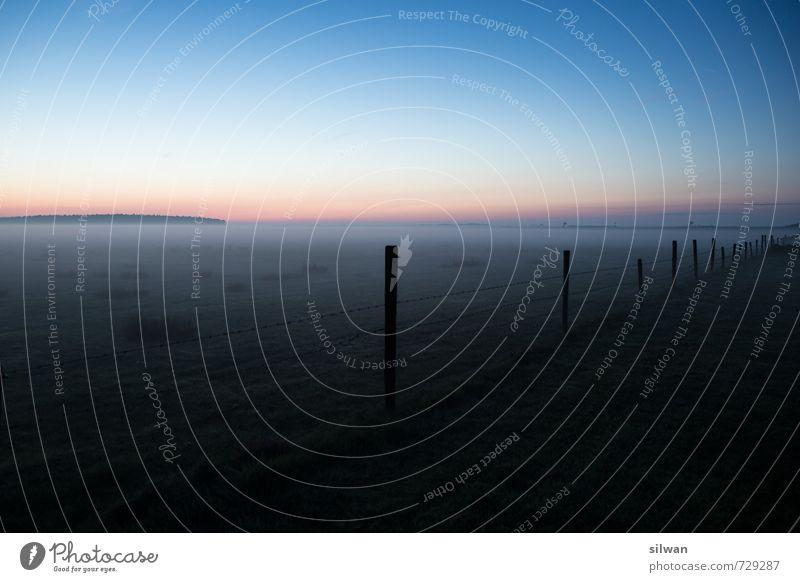 kitschiger Nebel Landschaft Himmel Wolkenloser Himmel Nachthimmel Horizont Sonnenaufgang Sonnenuntergang Frühling Schönes Wetter schlechtes Wetter Feld