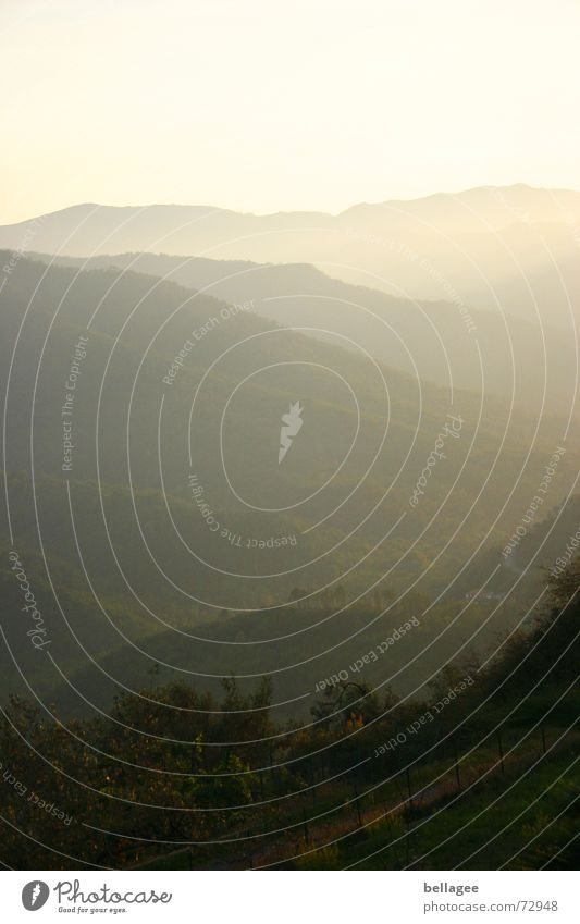 dünstig grün gelb Gras Berge u. Gebirge Landschaft Nebel Horizont Sträucher Italien Hügel Ligurien