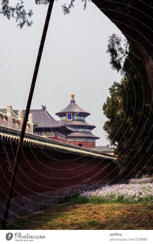 Spieldose Peking China Stadt Stadtleben Chinesische Architektur Tempel Frühling Park