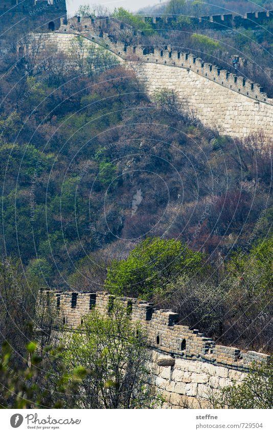 sich schlängelnder Drache Peking China Mutianyu chinesische Mauer große Mauer Sehenswürdigkeit Wahrzeichen Berge Frühling Urlaub Schutz