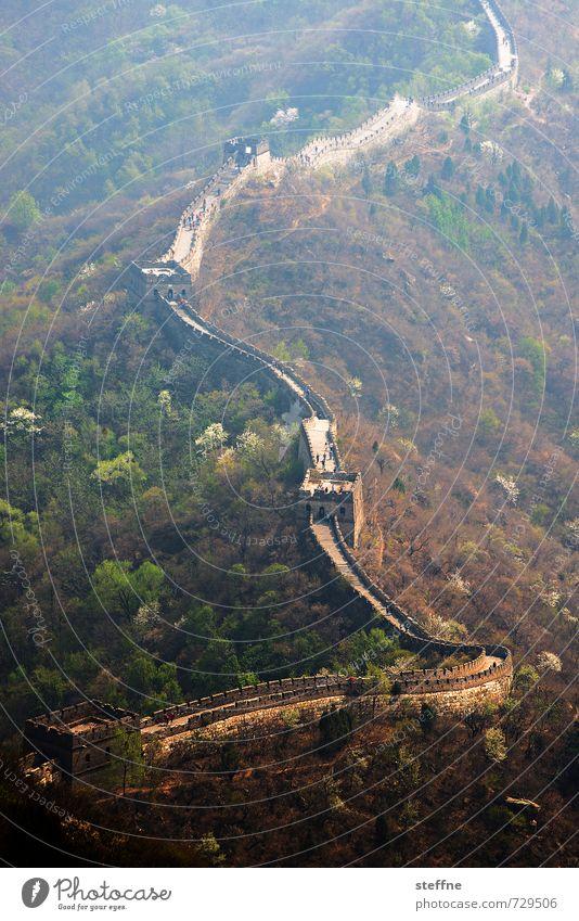 Die Mauer muss ... Landschaft Berge u. Gebirge China Sehenswürdigkeit Wahrzeichen Chinesische Mauer ästhetisch außergewöhnlich historisch Farbfoto