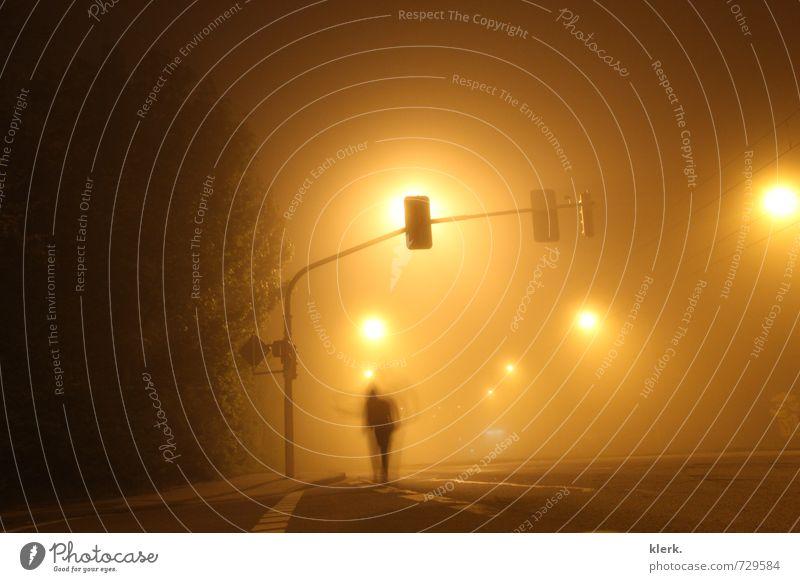 Illusion im Nebel. 1 Mensch Baum Stadt Straße Metall hell braun gelb orange schwarz Gefühle Geborgenheit Freiheit geheimnisvoll Gelassenheit Farbfoto