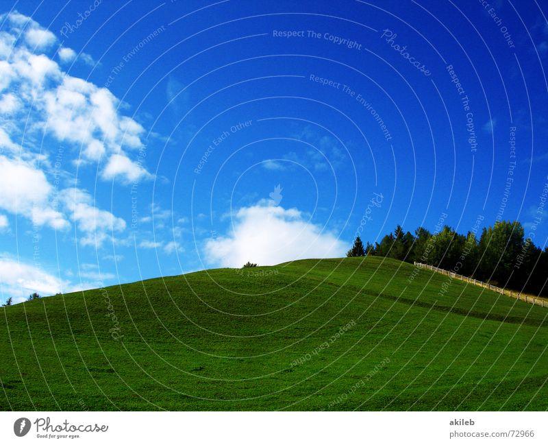 Teletubbies XP Natur Himmel grün blau ruhig Wolken Erholung Wiese Gras Wärme Hintergrundbild Rasen Weide Farbe Geborgenheit Fantasygeschichte
