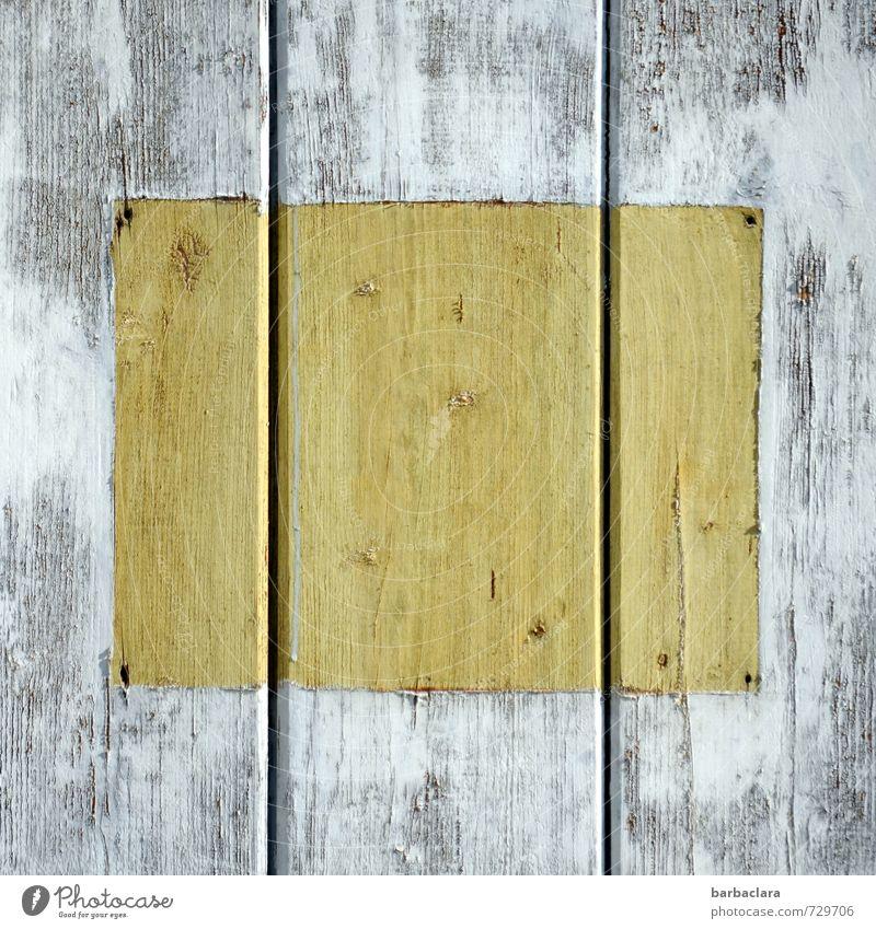 Wechselrahmen Mauer Wand Fassade Holz Schilder & Markierungen Rahmen ästhetisch Design Farbe Klima Natur Schutz Symmetrie Wandel & Veränderung Farbfoto