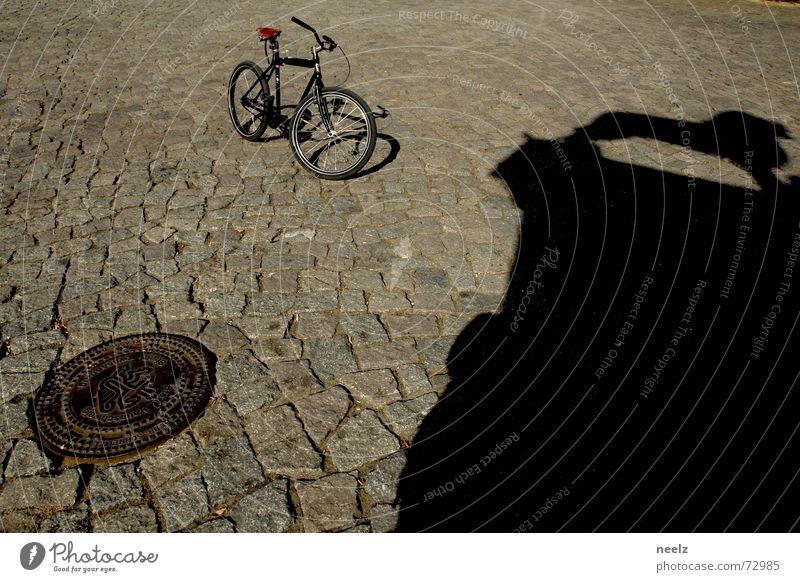 Gut gebrüllt...01 Fahrrad Kopfsteinpflaster Schönes Wetter Gully Löwe Katze Braunschweig