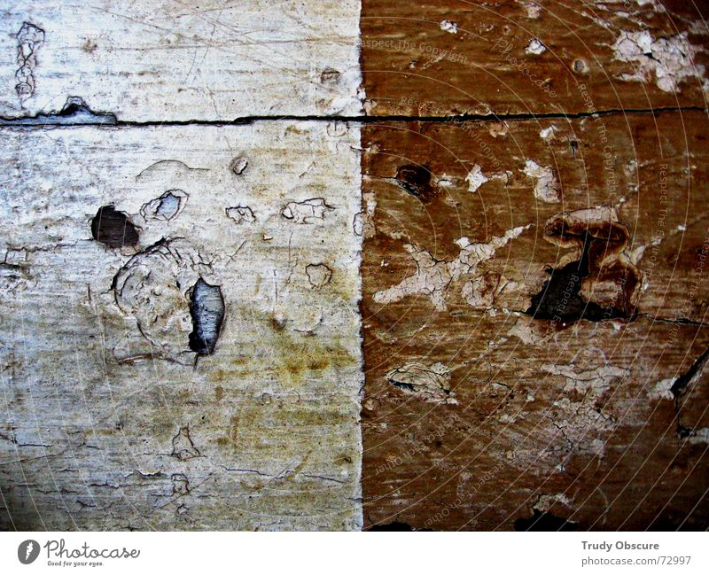 making the nature scene IV Einsamkeit Holz Zusammensein einzigartig Teilung Holzbrett Material Trennung Oberfläche einzeln Balken extra separat abgesondert