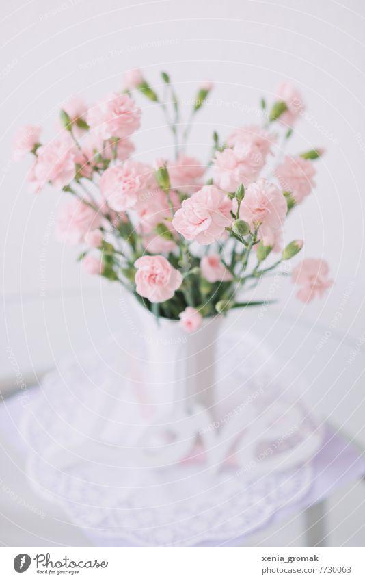 Blumenstrauß Freude Haus Liebe Innenarchitektur Stil rosa Wohnung Lifestyle elegant Häusliches Leben Design Dekoration & Verzierung ästhetisch Tisch Blühend