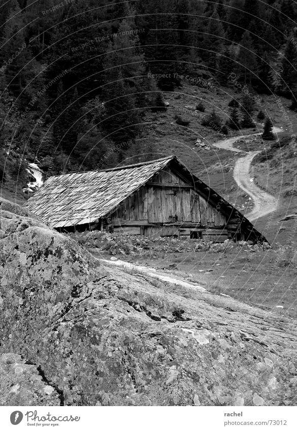 Wie weit noch? alt Ferien & Urlaub & Reisen Einsamkeit Wald Berge u. Gebirge Wege & Pfade Gras Traurigkeit Wetter gehen Felsen laufen wandern Pause Schutz Alpen