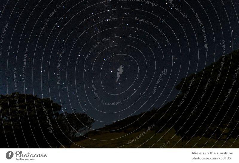 hintergründig: sternenmeer Himmel Natur Sommer Baum Erholung Einsamkeit Landschaft ruhig Ferne Umwelt Hintergrundbild Freiheit Horizont glänzend Stern