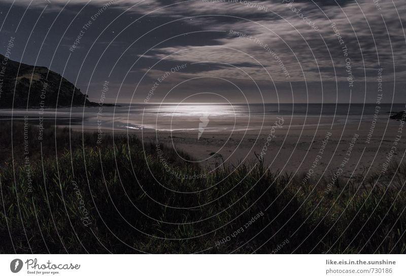 nachts am strand Natur Ferien & Urlaub & Reisen Sommer Meer Einsamkeit Landschaft ruhig Ferne Strand Umwelt Küste Gras natürlich Freiheit Zufriedenheit Sträucher