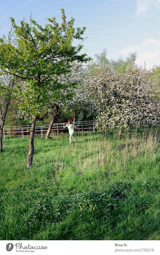 Pink IV Mensch Kind Himmel Natur Jugendliche grün Baum Junge Frau Landschaft Mädchen Wiese Bewegung Frühling Gras Blüte lachen