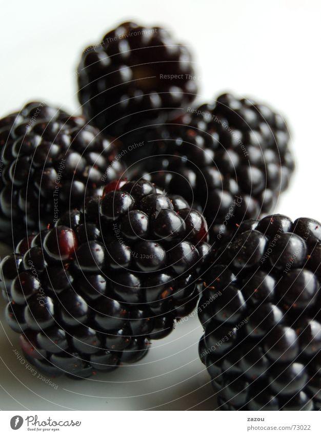 blackberry ohne email-funktion! Farbfoto Lebensmittel Frucht Dessert Ernährung süß Vitamin Brombeeren Beeren