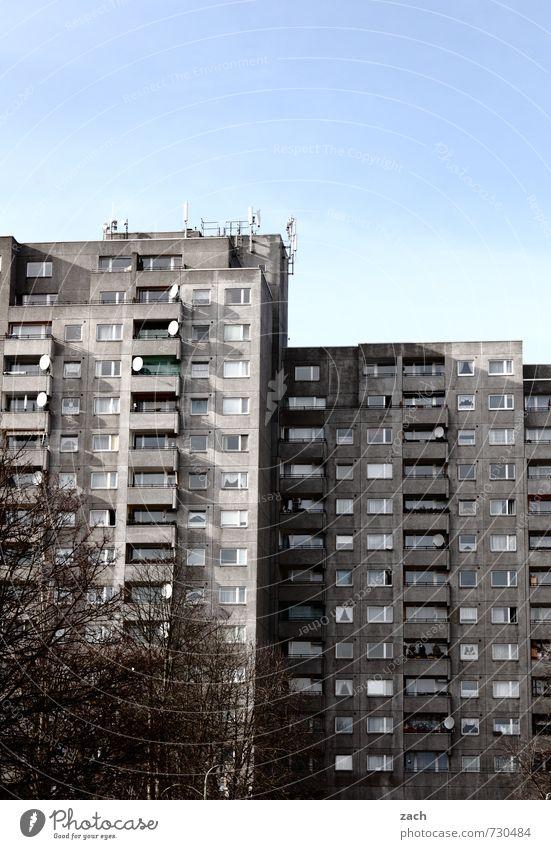 Nachbarschaft Baum Berlin Stadt Hauptstadt überbevölkert Haus Hochhaus Gebäude Architektur Mauer Wand Fassade Fenster Antenne Satellitenantenne Stein
