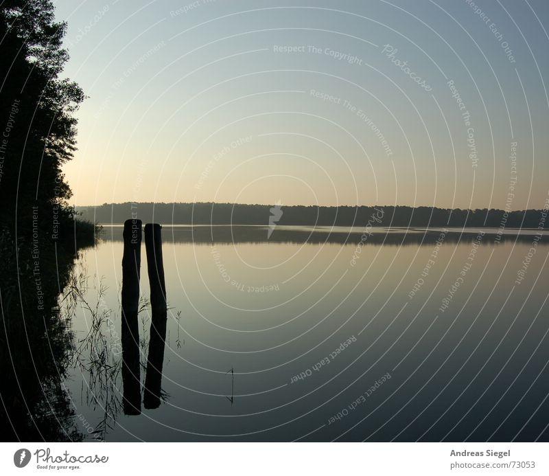Spieglein, Spieglein See Hölzerner See Hintergrundbild Spiegel Reflexion & Spiegelung Baumstamm träumen ruhig Erholung Morgen Traumwelt Säule Spiegelbild