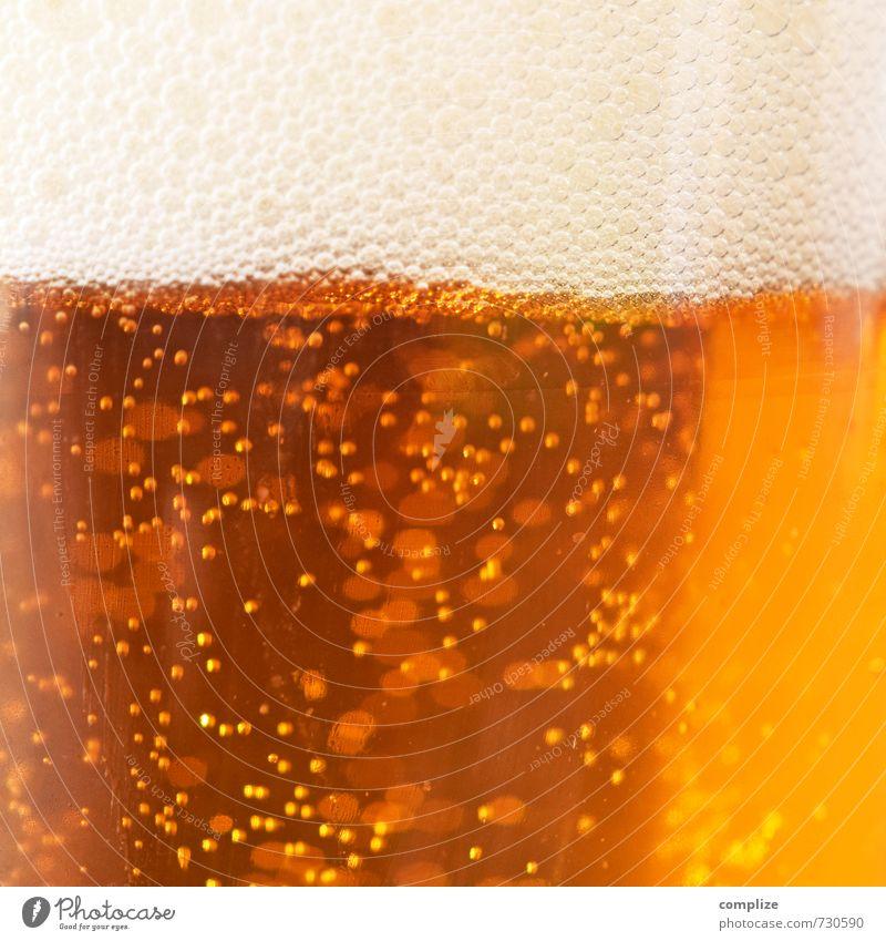 Prost Bayern! Getränk Alkohol Bier Glas Gesundheit Rauschmittel Nachtleben Club Disco ausgehen Feste & Feiern trinken Gastronomie Schaum Blase Kohlensäure