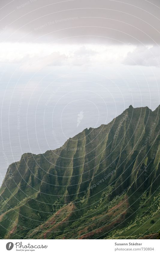Na Pali Coast State Park Natur Landschaft Sommer Gras Felsen Berge u. Gebirge Schlucht Meer Bekanntheit Na Pali Küste Hawaii Kauai Falte unberührt Farbfoto