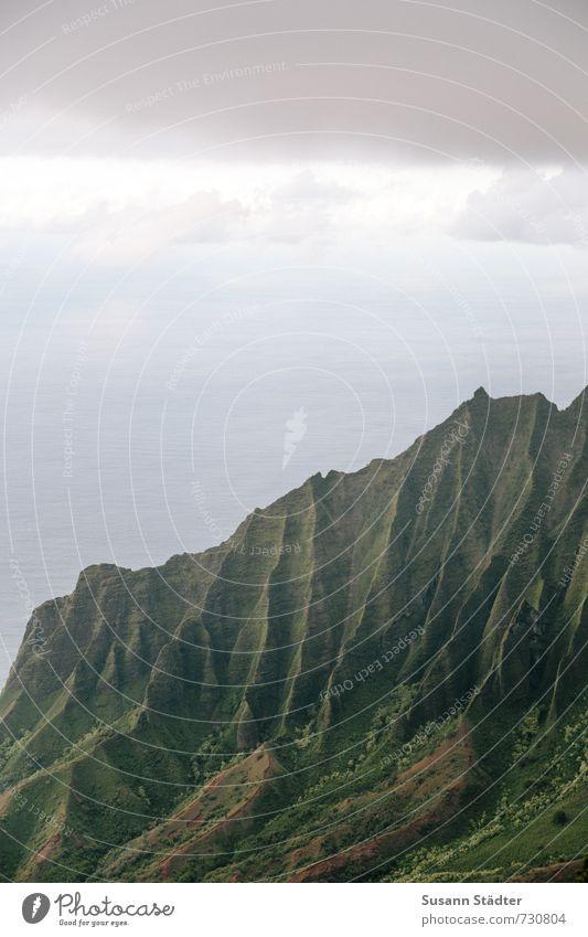 Na Pali Coast State Park Natur Sommer Meer Landschaft Berge u. Gebirge Gras Felsen Falte Schlucht Bekanntheit unberührt Hawaii Kauai Na Pali Küste