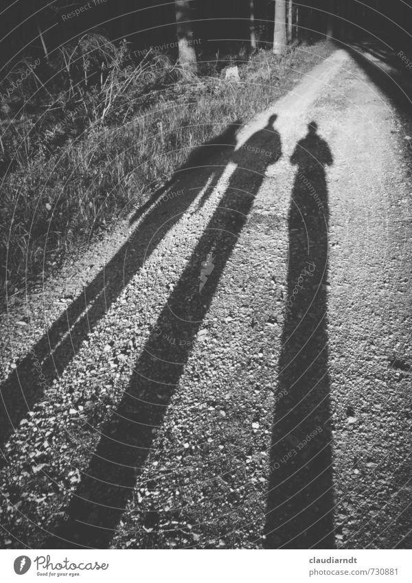 Auf dem Weg Mensch Frau Natur Mann Baum Wald Erwachsene Wege & Pfade gehen Zusammensein Freundschaft Körper wandern Schönes Wetter Spaziergang Glaube