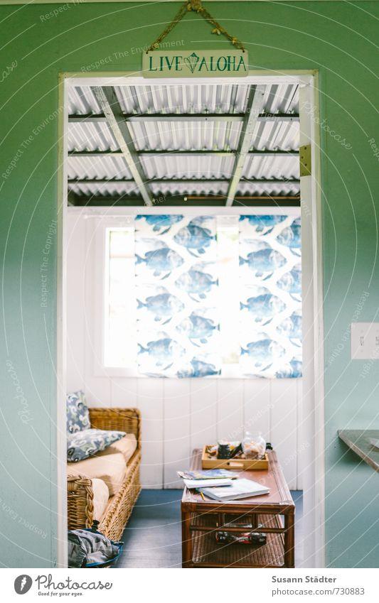live aloha Erholung ruhig Haus Fenster Innenarchitektur Wohnung Raum Häusliches Leben Dekoration & Verzierung niedlich Fisch Möbel Gelassenheit Sofa Wohnzimmer