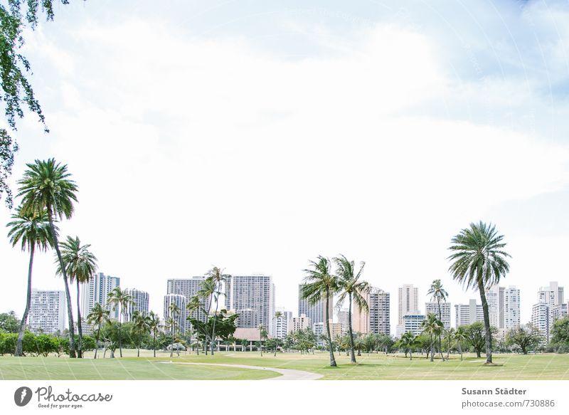 waikiki golf course Stadt Baum Wolken Wiese Hochhaus Insel Schönes Wetter Palme standhaft Wildpflanze Oase Hawaii Golfplatz Waikiki Palmentapete