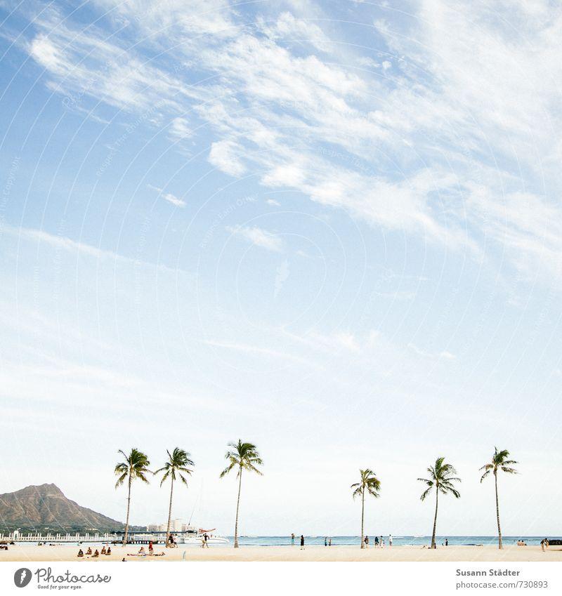 III III Ferien & Urlaub & Reisen Tourismus Ferne Sommerurlaub Sonnenbad Mensch Menschengruppe exotisch Berge u. Gebirge Küste Horizont Umwelt Hawaii Oahu Palme