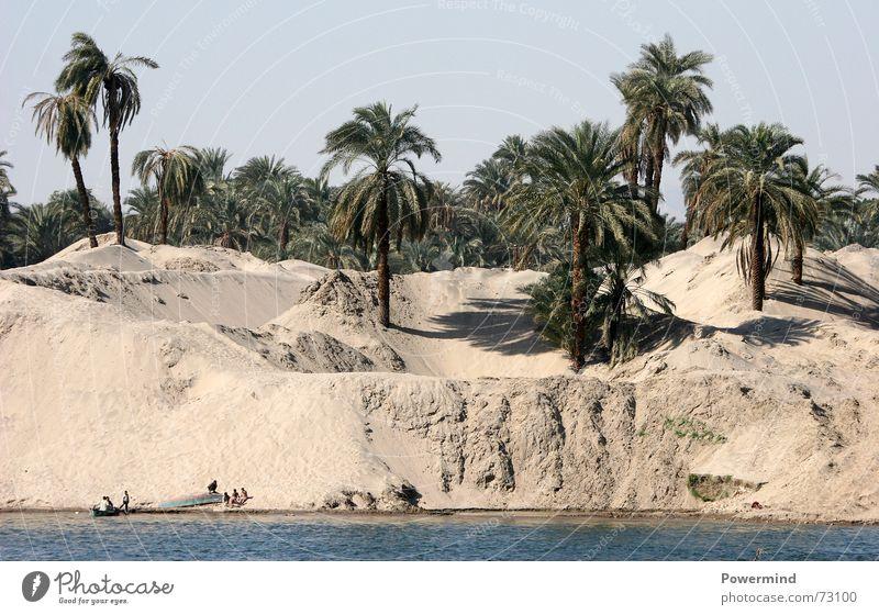 BuddelkastenXXL Wasser Sand Fluss Afrika dünn Appetit & Hunger Palme Stranddüne Fischereiwirtschaft Sahara Ägypten Verdunstung Nil verdursten
