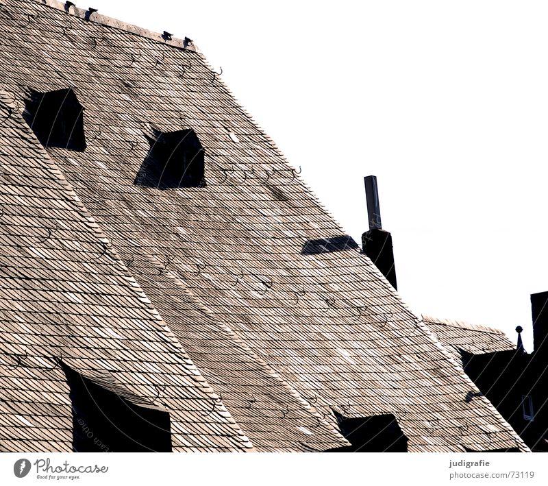 Dach Satteldach Dachfirst Wange Speiseröhre Deckung Haken 4 Taube Vogel Backstein Dachziegel ruhig Fenster Dachgaube Haus Altbau Gebäude Goslar dachhäuschen